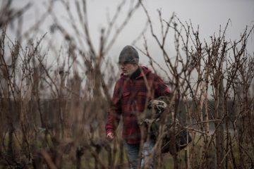 Signori del vino, dal 2 gennaio con Marco Simonit