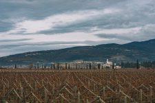 Valpolicella | Verona