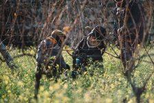 Tutoraggio in vigna | Planeta | Passopisciaro | Sicilia | Italy