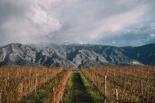 Etna | Planeta | Passopisciaro | Sicilia | Italy
