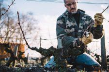 Metodo Simonit&Sirch applicato al Guyot médoc | Château Latour | Pauillac | Bordeaux