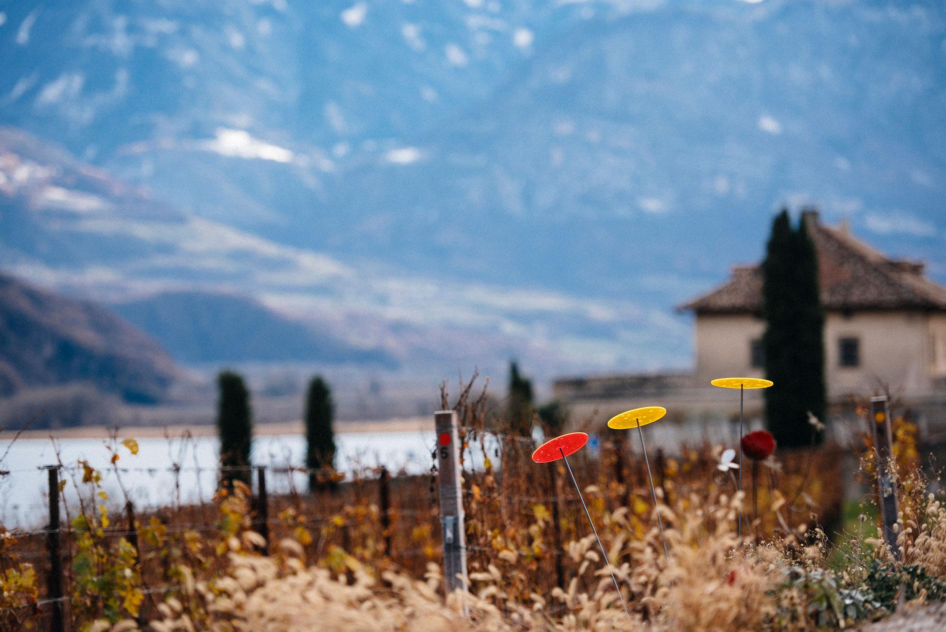 Manincor | Caldaro | Alto Adige | Italy