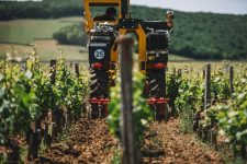Lavorazione suolo | Domaine Leroy | Clos de Vougeot | Bourgogne